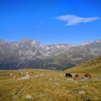 Ogólnie o Tatrach