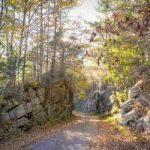 Warta odwiedzenia Dolina Kościeliska
